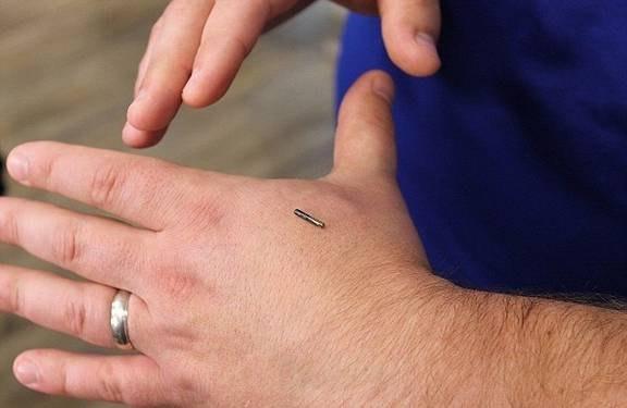 2 - مزایا و عوارض مانیکور میکروچیپ چیست ؟ | میکروچیپ سگ | میکروچیپ ریدر
